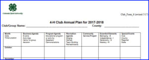 annual plan document example