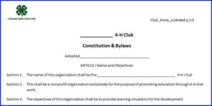 Constitution and Bylaws example