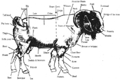 goat-market-body-parts