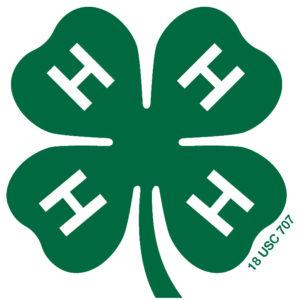 green 4-H clover