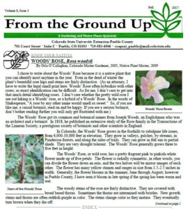 Cover of fall newsletter with picture of flowers
