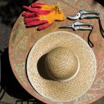 hat, pruners, and gardening gloves on table