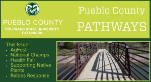 gold and green logo pueblo county pathways cement bridge with brown railing