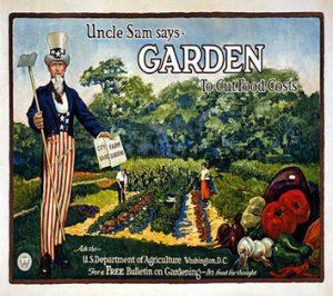 Uncle Sam standing in garden