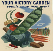 WWI poster of pea pod
