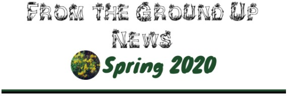 from the ground up news spring 2020