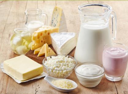 milk cheese yogurt cottage cheese