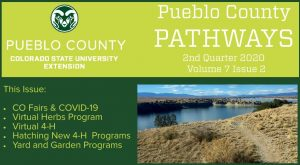 green and gold image pueblo county pathways with trail leading into pond