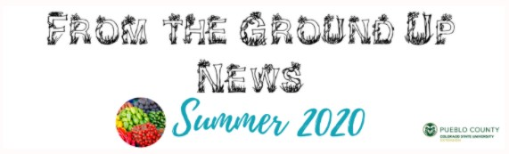 from the ground up news summer 2020