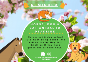 green circle graphic with cartoon cats and dogs animal ID due May 1