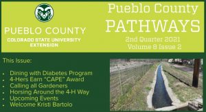 pueblo county pathways cover photo of an irrigation canal with water
